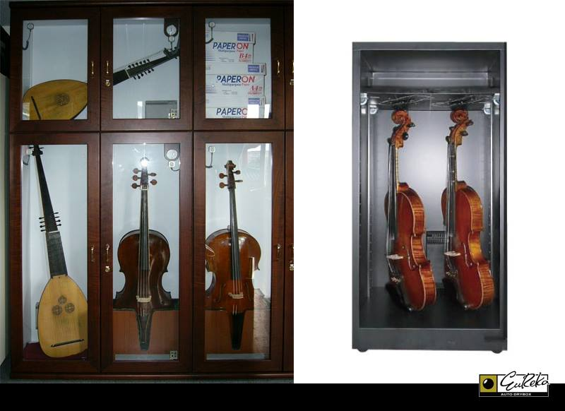 Various Stringed Instrument Stored in Eureka Auto Dry Cabinet