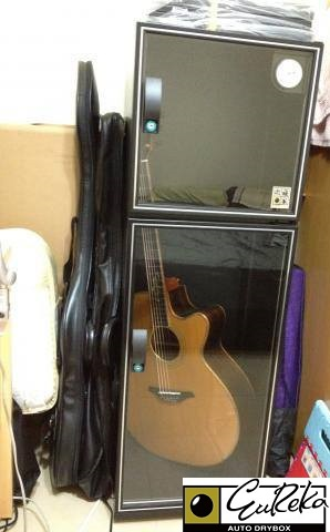 Guitar stored in Eureka Auto Dry Box